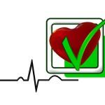 fettstoffwechsel puls