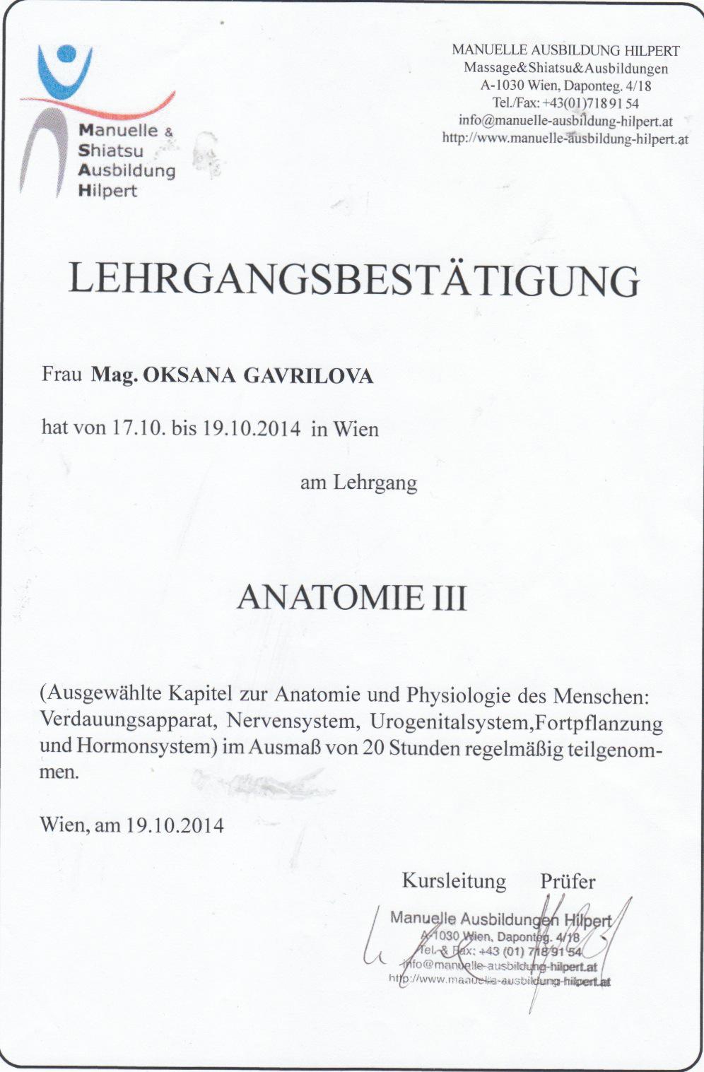 Erfreut Anatomie Und Physiologie Kapitel 19 Fotos - Menschliche ...